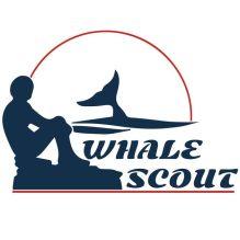 whale-scout-logo-wht-1